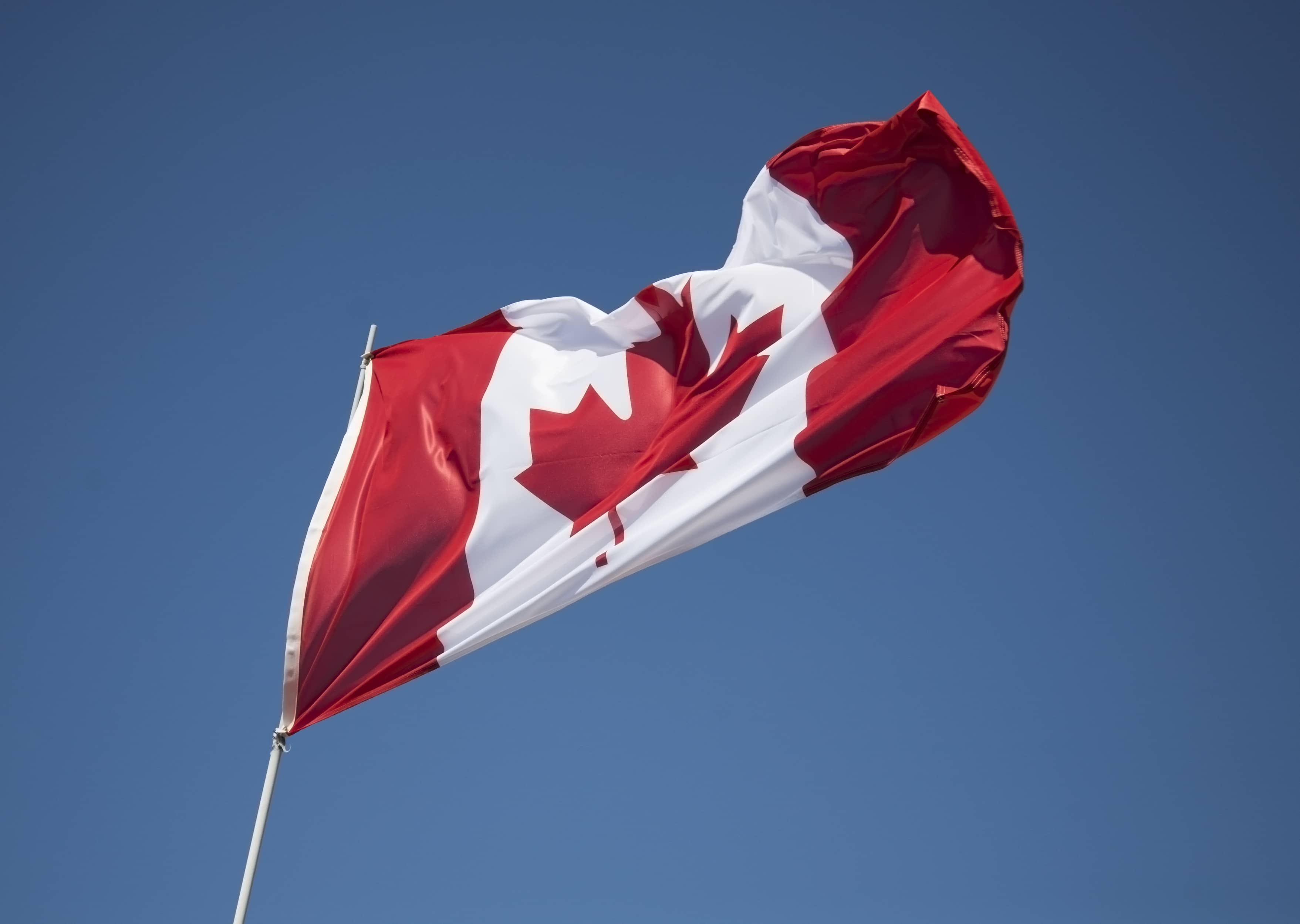 A Canadian flag fluttering against a clear blue sky.