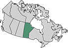 A map of Canada with the province of Manitoba highlighted