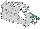 A map of Canada with Newfoundland and Labrador highlighted