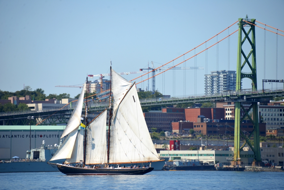 The iconic Bluenose II during the Tall Ships Parade of Sail in Halifax Harbour