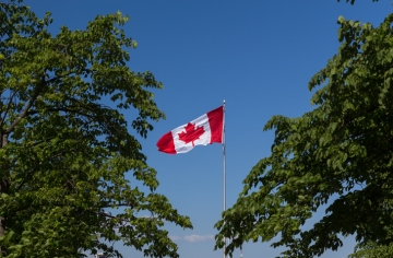 A Canadian flag flying among trees